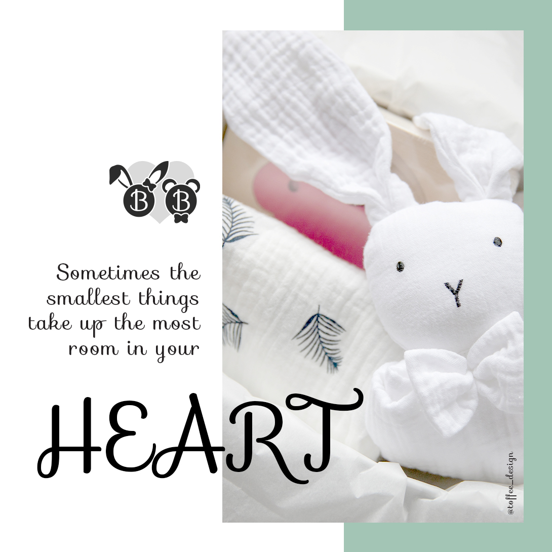 Little Bunny Bear_instagram_you
